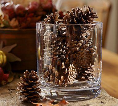 Pottery Barn Pine Cone Vase Filler