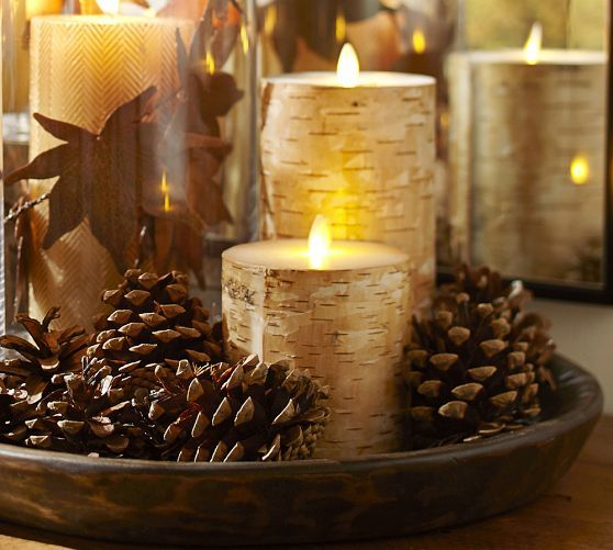 Pottery Barn Birch Bark Flameless Candles