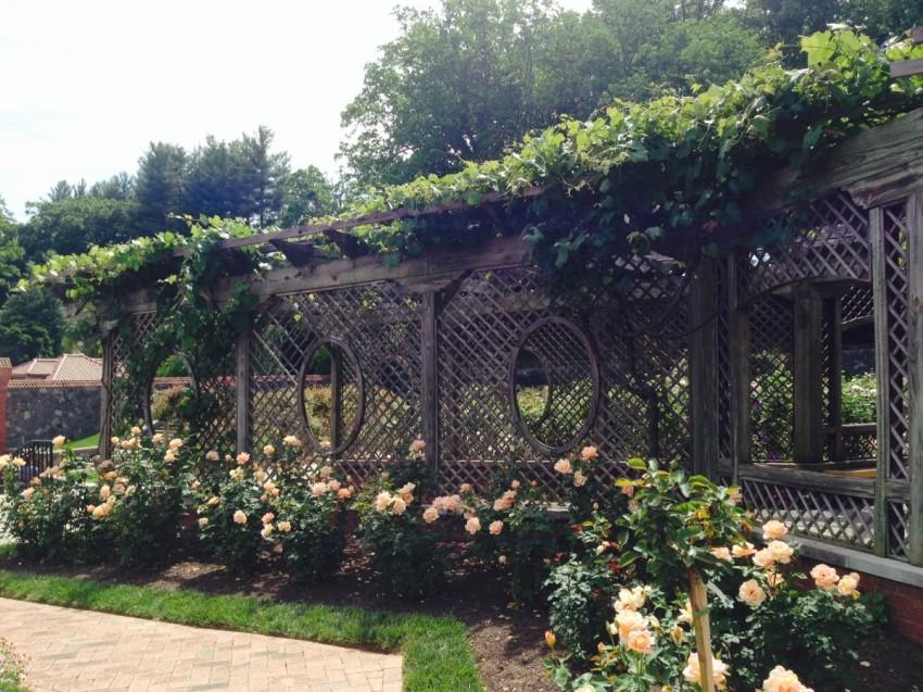 GotMyReservations Biltmore Walled Garden Pergola