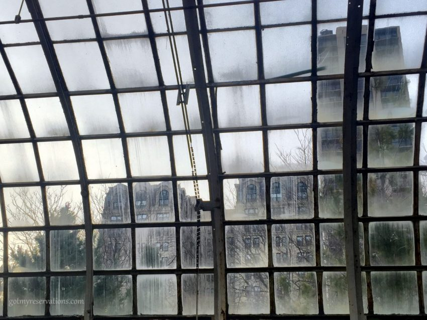 lincoln park conservatory windows